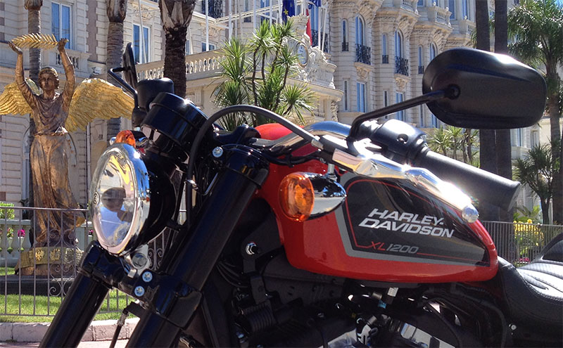 Location Harley 06